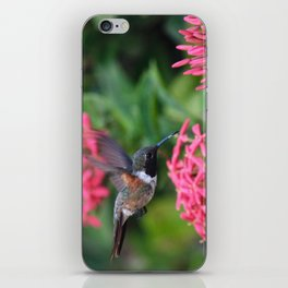 Beauty iPhone Skin