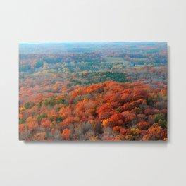 Autumn Mountain View Metal Print