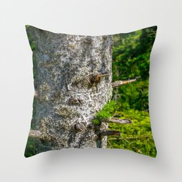 Tree Trunk with short thick Branch Stumps Throw Pillow