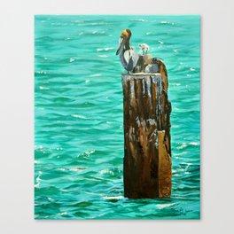 Boca Birds Canvas Print