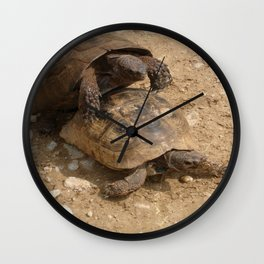 Slow Love - Tortoises Wall Clock