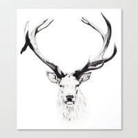 stag Canvas Prints featuring STAG by A.J.F