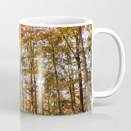 North Georgia Fall Colors Coffee Mug