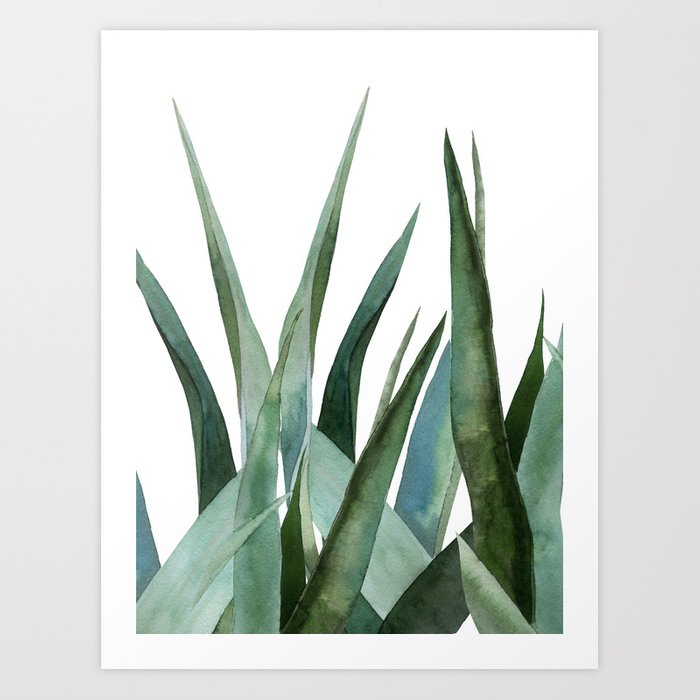 Discover the motif AGAVE LEAVES by Art by ASolo as a print at TOPPOSTER