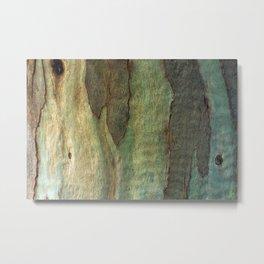 Eucalyptus Tree Bark 6 Metal Print