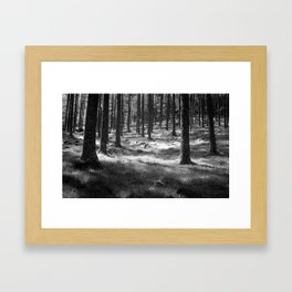 Forest in Buttermere, Lake District, England Framed Art Print