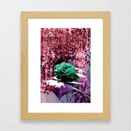Somewhere 1 Framed Art Print