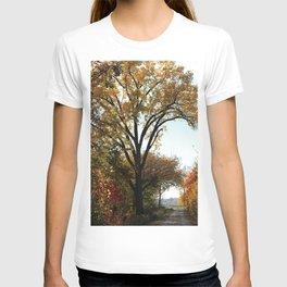 Fall Walk T-shirt