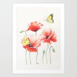 Poppies and butterflies Art Print