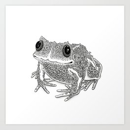 Mossy Frog Art Print