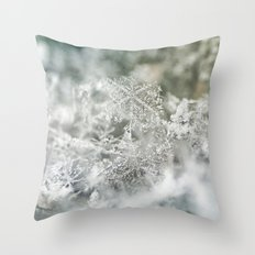 Seasons GreetingsII No Text Throw Pillow