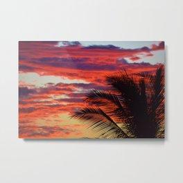 pomegranate sunset Metal Print