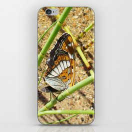 Butterfly and horsetail iPhone Skin
