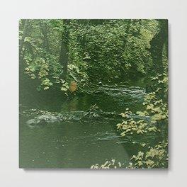 Big Creek 1 Metal Print
