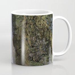 Pinard Falls Squared Coffee Mug