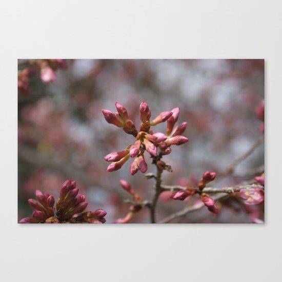 new pink season Canvas Print
