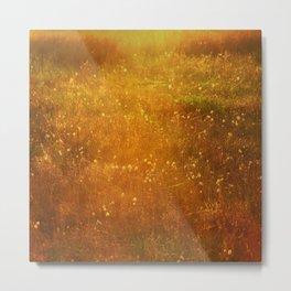 In Fields of Gold, Landscape Wildflowers Metal Print