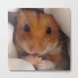 Hamster love Metal Print