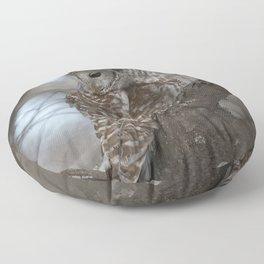 Sleepy Owl Floor Pillow