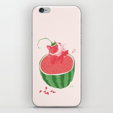 Mussegull Melonis iPhone & iPod Skin