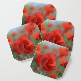 Red Poppies Blooming Coaster