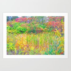A Walk Among the Colors Art Print