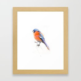 Ave 7 Framed Art Print