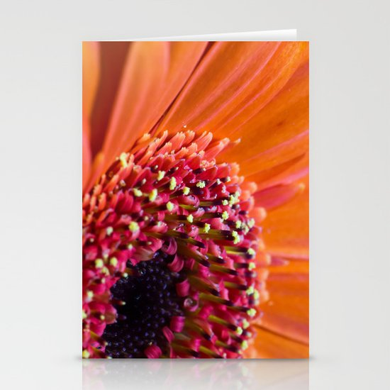 Orange Germini. Stationery Cards