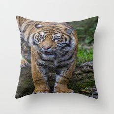 My Water  Throw Pillow