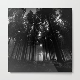 Cool Black and White Forest Fog Silence Gifts Metal Print