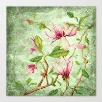 magnolia Canvas Prints featuring Magnolia by CatDesignz
