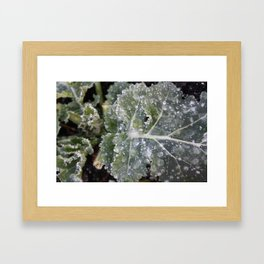 The First Frost Framed Art Print