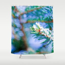 Bitter Cold, Ice Crystals On Fir Tree Needles Shower Curtain