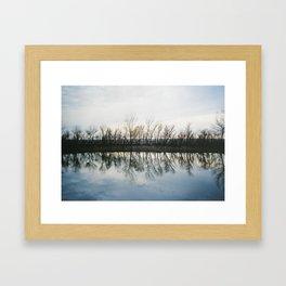 """Salt Cedars Reflecting in Pond"" Framed Art Print"