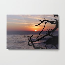 Sunset by the Lonely Cypress. Metal Print