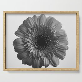 Black and White Gerbera Serving Tray