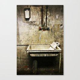 The quiet harmony of decay Canvas Print