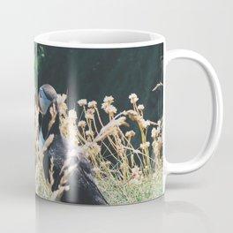 Puffin On Staffa Island Coffee Mug