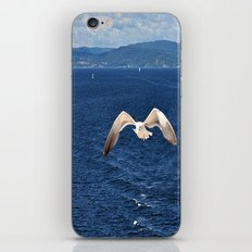 seagull with landscape iPhone & iPod Skin
