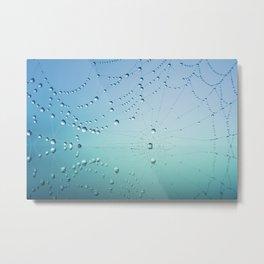 Dewy Spiderweb Metal Print