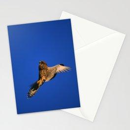 FLIGHT OF THE KESTREL Stationery Cards
