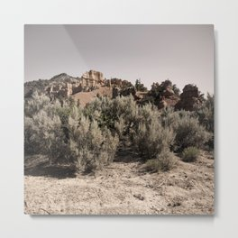 Desert Peace Metal Print