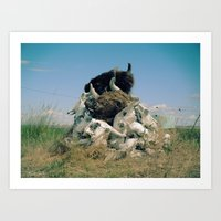 Spirit Buffalo, Spirit Me Away Art Print
