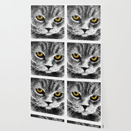 Cattitude Wallpaper