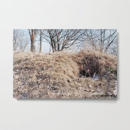 35mm Foxhole Metal Print