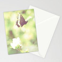 Butterfly Pavilion Stationery Cards