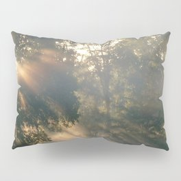 """ Heaven Shining "" Pillow Sham"