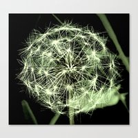 sacred geometry Canvas Prints featuring Sacred Geometry  by a.rose