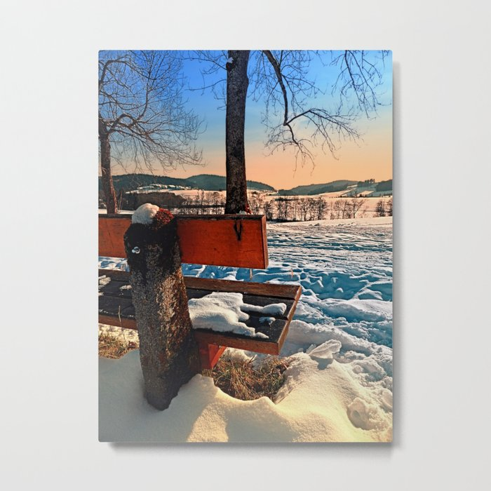 View into winter scenery Metal Print