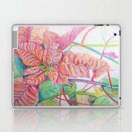 Poinsettia Laptop & iPad Skin